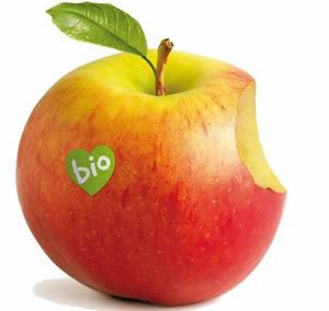 Logo de la feria BioCultura