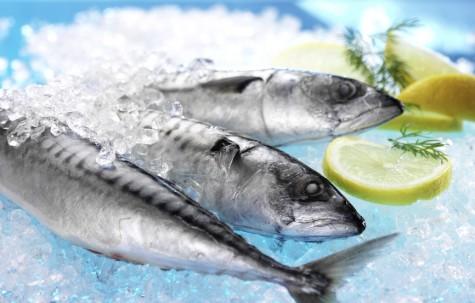 Pescado azul, rico en vitamina D: para las defensas, huesos y contra el cáncer