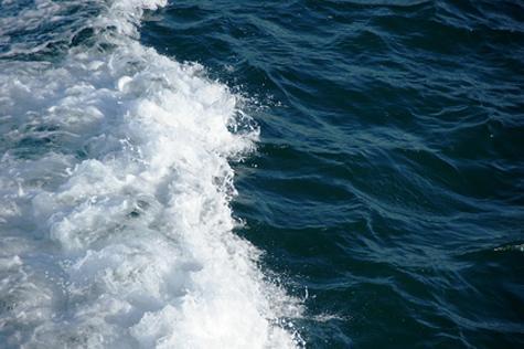 El agua de mar combate problemas de laringe, nasales y oídos