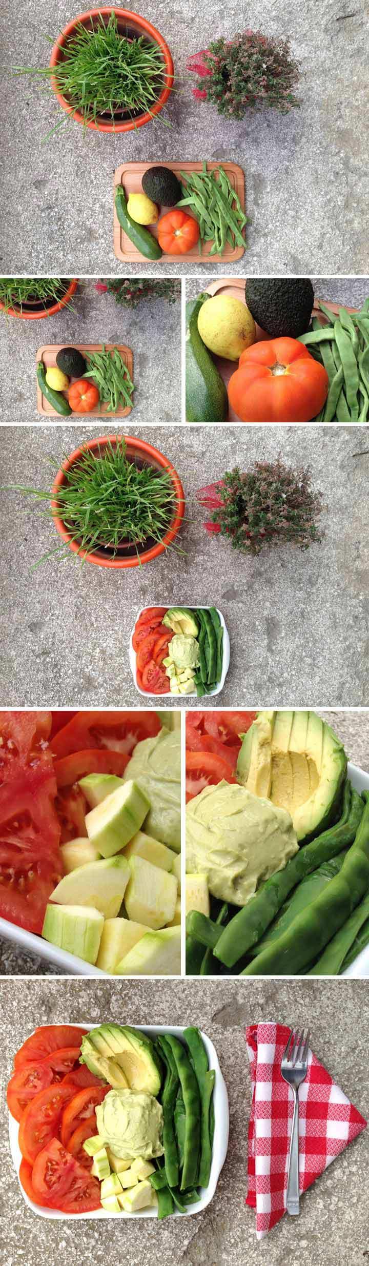 Ingredientes y elaboración dieta anticandida