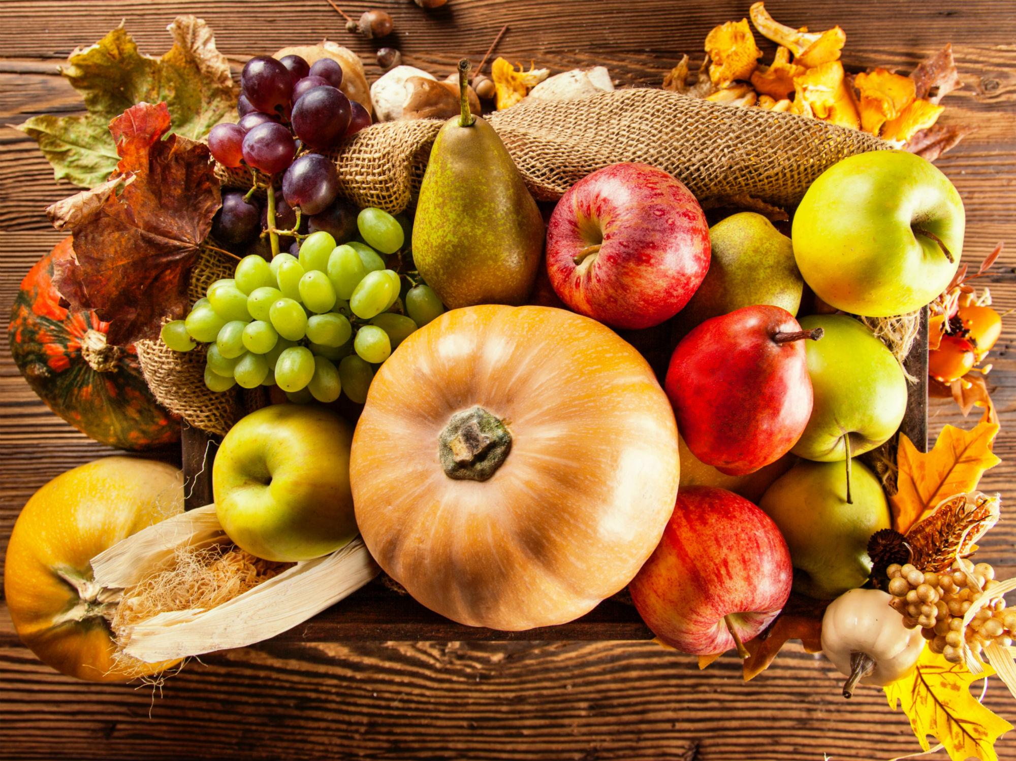 Aliments de tardor - destacada