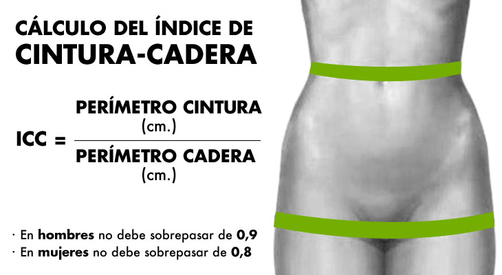 index_cintura-malucs_cast