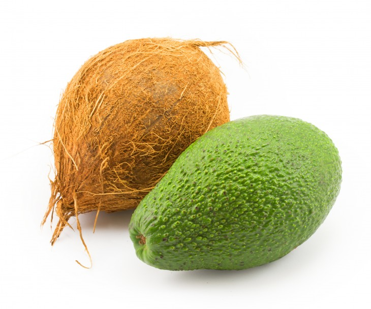 coco aguacate