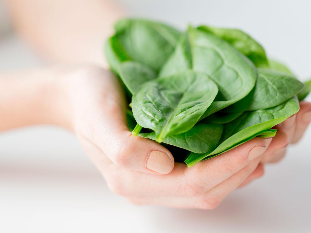Propiedades y beneficios para la salud de las espinacas