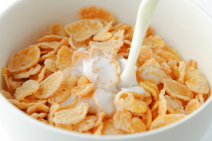 cereales bol