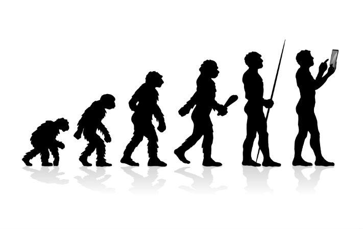 evolucion especie