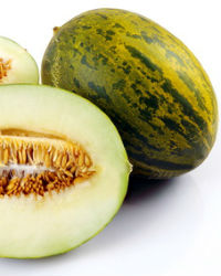 melon texto