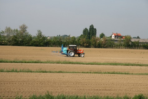 agricultura-intensiva-e1329683875144
