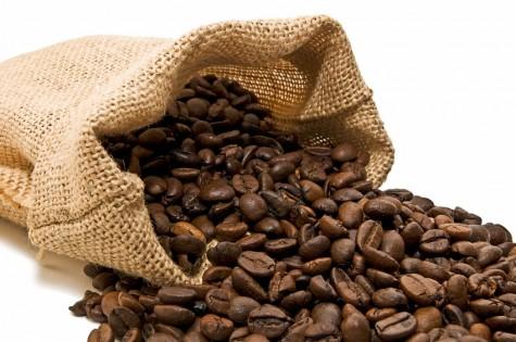 cacao1-e1331923937544