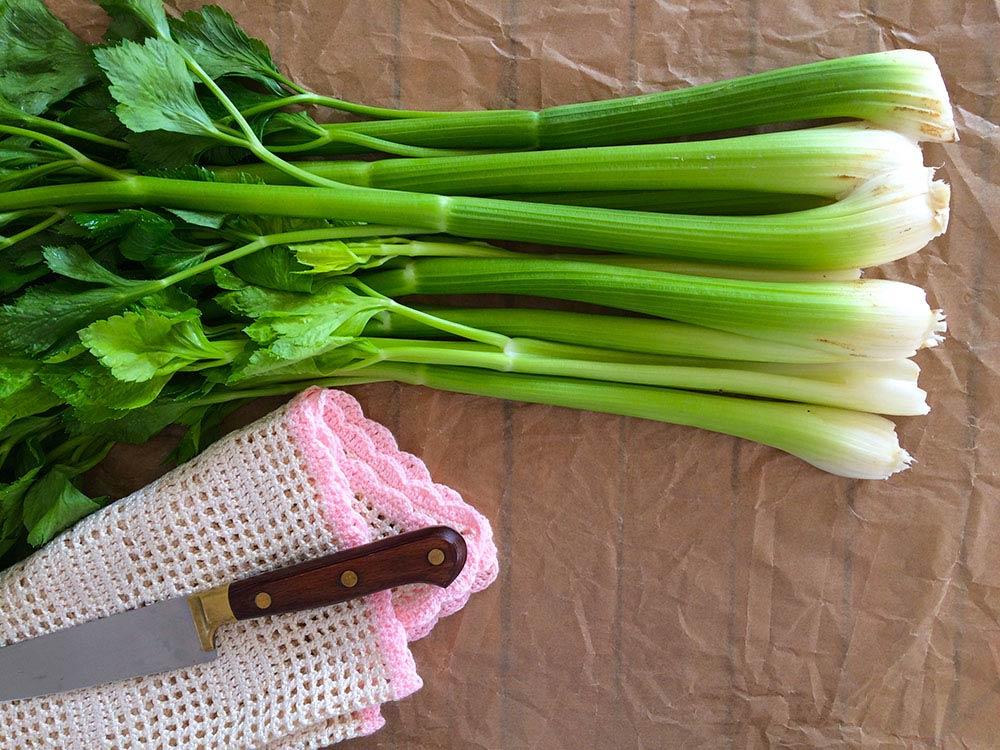 5 verduras para una buena digestión