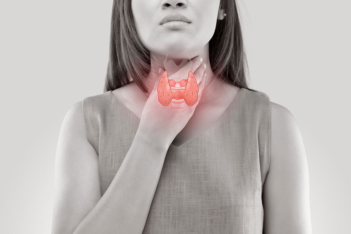 El ABC de la glándula tiroides