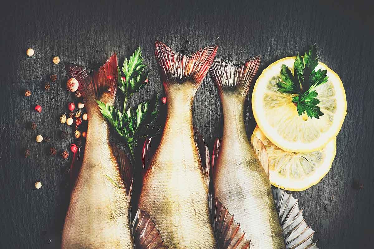 ¿Qué sucederá si continuamos consumiendo el pescado de forma irresponsable?