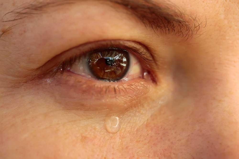 Maqui, la baya patagónica que acaba con los síntomas del ojo seco
