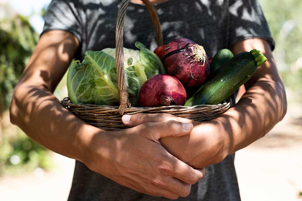 ¿Por qué las verduras deberían ser la base de nuestra alimentación?