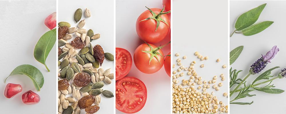 ¿Cuáles son los alimentos imprescindibles en verano?