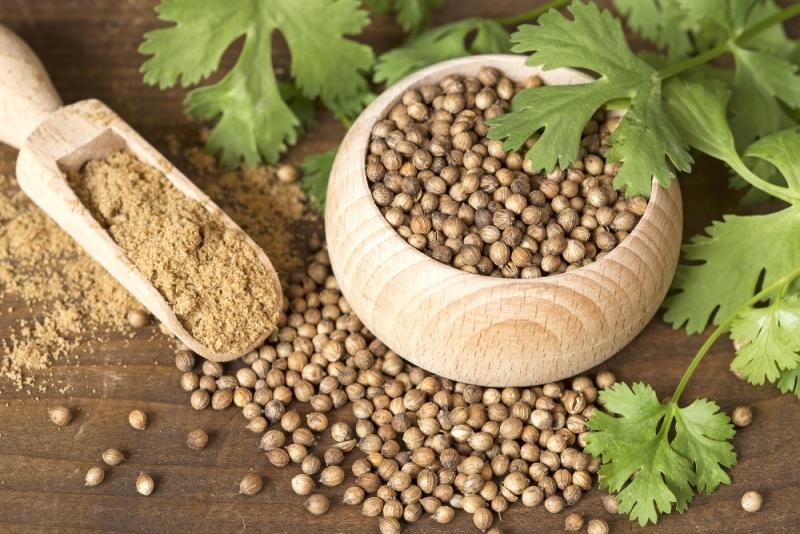 Propiedaes y beneficios del cilantro