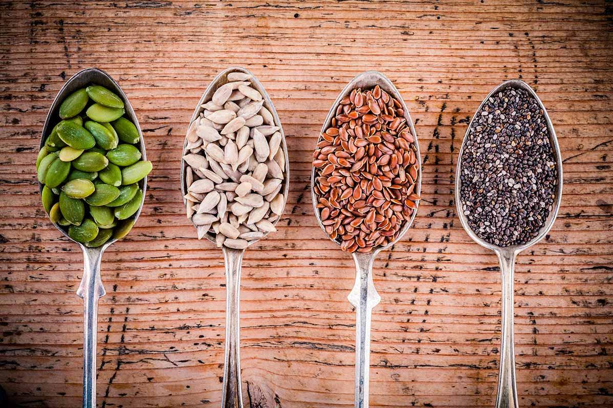 Semillas, pequeños tesoros nutricionales