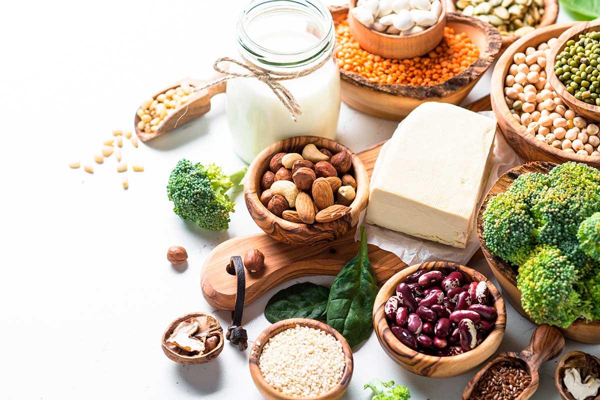 Tipos de proteínas vegetales