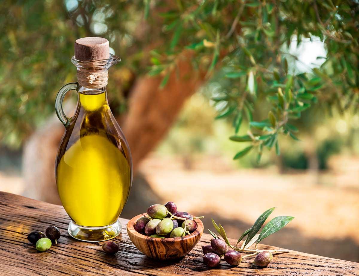 Propiedades nutricionales del aceite de oliva