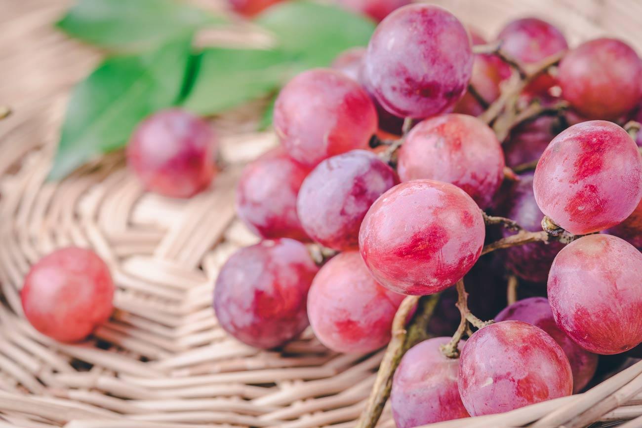 Propiedades y beneficios para la salud de la uva