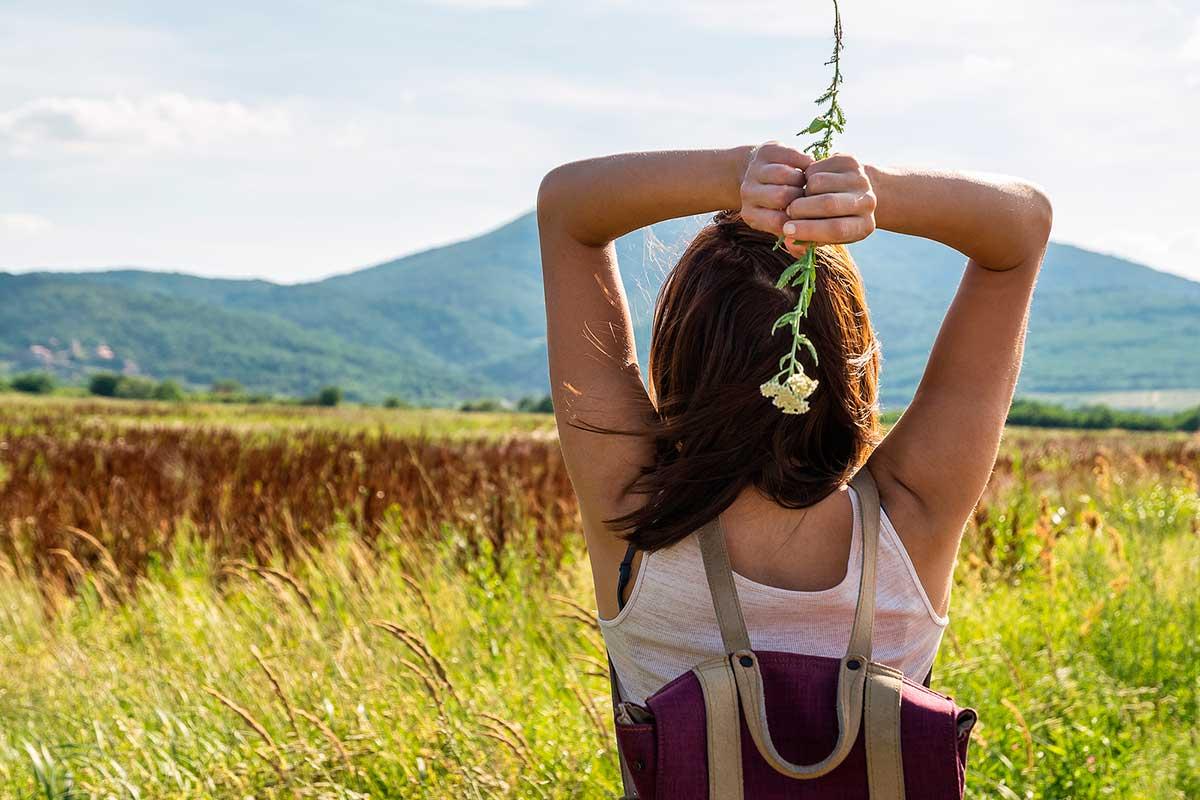 Mejora el estado de ánimo y el estrés con plantas adaptógenas