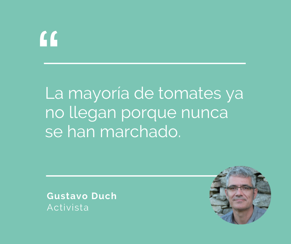 tomates de temporada