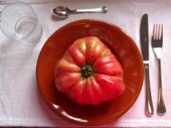 ¿Los tomates, mejor con piel o sin piel?