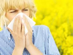 Cómo evitar las alergias estacionales de forma natural