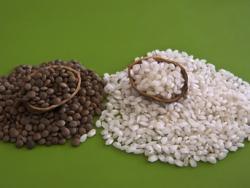 Semana 7: Un plato de lentejas con arroz, pipas de calabaza y unas hojas de escarola. ¡Adelante con el hierro!