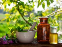 6 aceites clave para reparar la piel después del verano