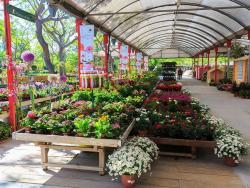 Garden Center Bordas, el paraíso de la horticultura y la jardinería ecológica
