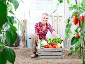 10 razones para comprar cestas de fruta y verdura directamente al productor