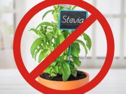 ¿Por qué se está prohibiendo la estevia en hoja?