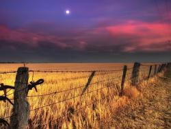 ¿Cómo afecta la superluna a los cultivos?