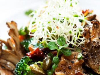 Germinados de alfalfa y fenogreco en la cocina diaria