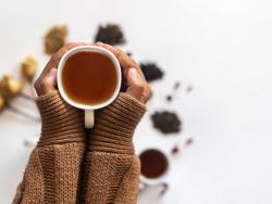 ¿Quieres disfrutar de una bebida sin cafeína ni teína? ¡Bebe una infusión!