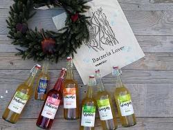 Regala Kombutxa, el sustituto perfecto del alcohol
