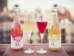 ¿Te imaginas una bebida carbonatada con beneficios para la salud? Pues existe, ¡y se llama Kombutxa!