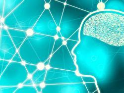 La PNIE como nuevo paradigma de la ciencia médica