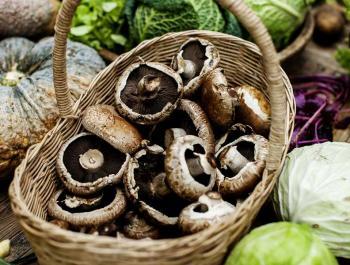 Especial cocina con setas: 11 recetas de temporada de otoño