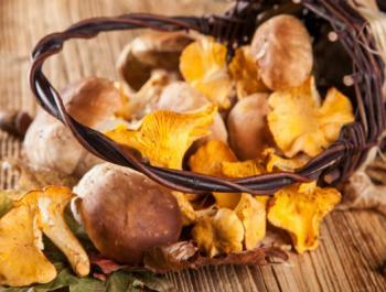 La guía anticáncer:  bases para empezar a hacer cambios en tu alimentación
