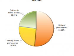 España, primer país de la Unión Europea en superficie de cultivos ecológicos