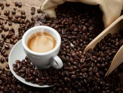 """""""Las cápsulas Nespresso atentan contra el medio ambiente y la salud"""""""