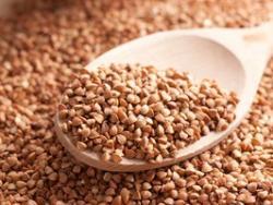 El trigo sarraceno