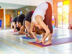Yoga y alimentación consciente