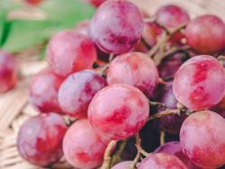 La uva