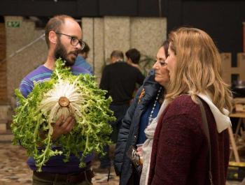 El valle ecológico: fruta y verdura ecológica directa a Madrid