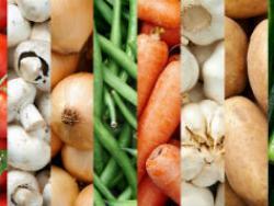 Manifestación por la regulación de los profesionales de la nutrición