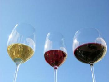Bebe vinos ecológicos