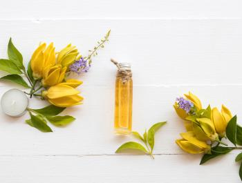 ¿Son lo mismo los aceites vegetales que los esenciales?